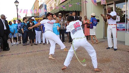 Capoeira Crusader